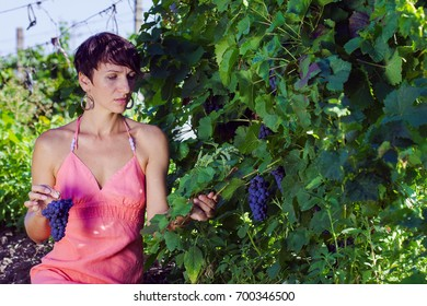 A beautiful girl in a vineyard trying a young wine. Beaujolais nouveau tasting