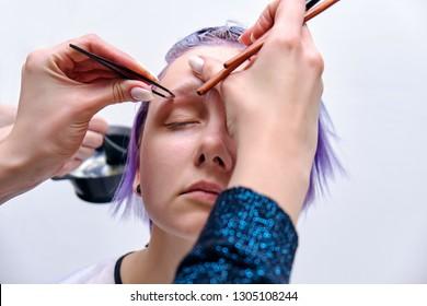 Pink Hair Highlights Images Stock Photos Vectors