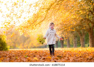 Beautiful girl in the warm autumn light with golden leaves on trees
