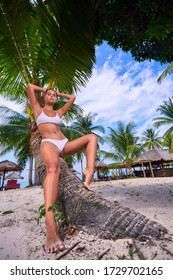 Beautiful girl in white bikini posing at the palm tree at sunny day in Thailand
