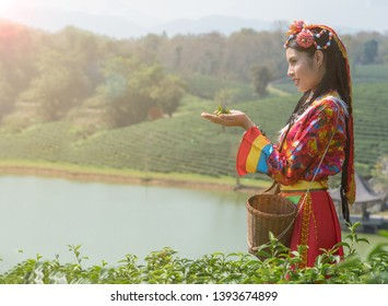 Beautiful girl in Yunnan clothing with tea leaves in the hand against background of mountain and river as background.