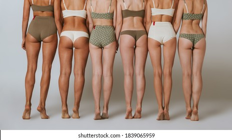 Beautiful girls in underwear. Group of women with different body backs.
