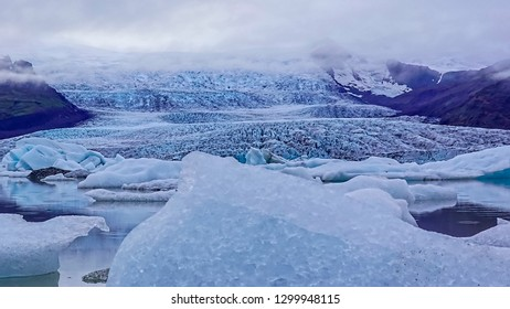 Beautiful Glacier Lagoon Background and cute seal at Jokusarlon, Iceland