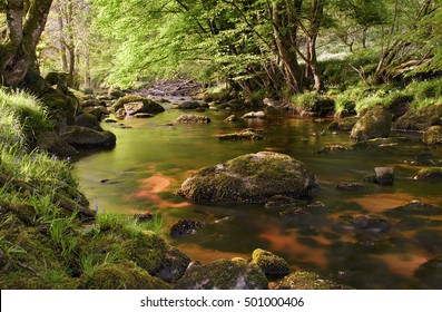 Beautiful glencree river flowing through magical landscape