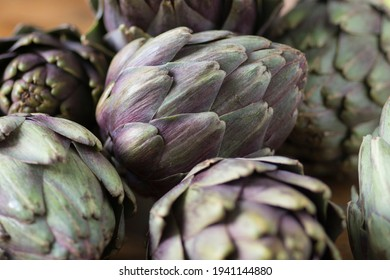 Beautiful Globe Artichokes (Cynara cardunculus var. scolymus), also known by the names French artichoke and green artichoke, in colors of green and purple, piled up on a wooden table