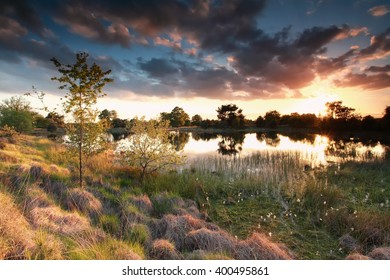 beautiful gold sun down over wild swamp in spring