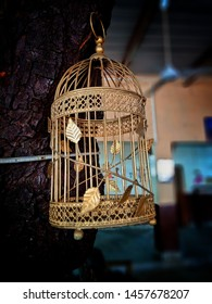 Beautiful golden color cage for love birds and parrots with bokeh background. Beautiful close up bokeh shot of cage of birds for advertisement.