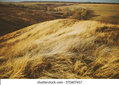 beautiful golden fields and hills in autumn