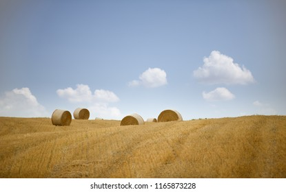 Beautiful golden hay bales on a field in Tuscany