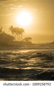 Beautiful golden hour sunset in the north shore of oahu hawaii with big waves during the surf contest, palm trees in the background and crashing waves in the foreground