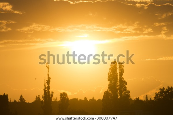 Beautiful golden sunset behind the trees and an intricate cloud pattern above the sun