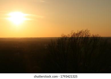 beautiful-golden-sunset-large-tree-260nw