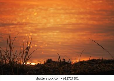 Beautiful golden sunset over water Raznas lake, Latvia