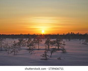 Hermosa puesta de sol dorada en un pantano cubierto de nieve en Lapland, Finlandia