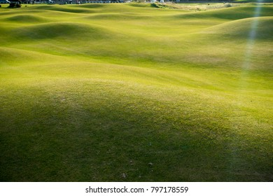 Beautiful Golf course, with green natural dunes