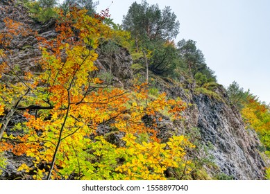 beautiful gorge from  dyed to autumn colors , janosikove diery , slovensko mala fatra