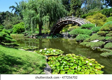 Beautiful, gorgeous landscapes in Huntington's Japanese Garden. San Marino, California.