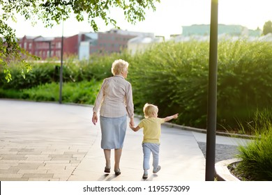 Beautiful granny and her little grandchild walking together in park. Grandma and grandson holding hands. Family time