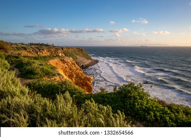 Beautiful grass blowing in the wind atop the tall bluffs of Point Vicente with waves crashing into the rocky shore below, Rancho Palos Verdes, California