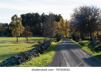 Beautiful gravel road in fall season colors at the swedish countryside