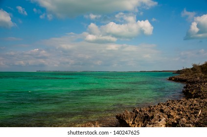 Beautiful green and blue waters in the islands of the bahamas, framed by a rocky limestone coastline.