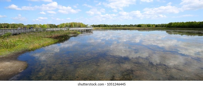 Beautiful Green Cay Preserve Wetland in Boynton Beach, Florida, USA.