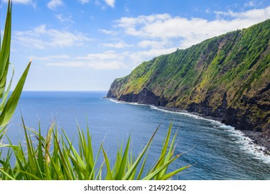 Beautiful green coast line of Sao Miguel, Azores, Portugal Europe