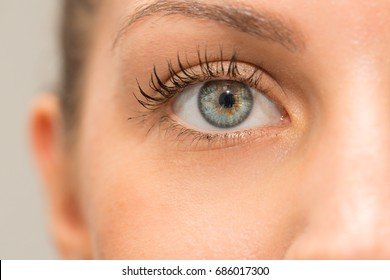 Beautiful green eye of woman