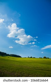 A beautiful green field or pasture on a warm summer day