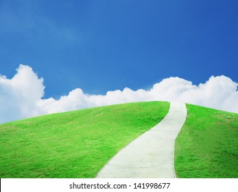 Beautiful green field under blue sky and pathway.
