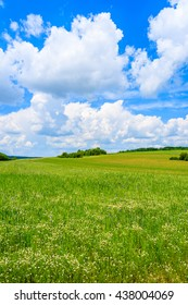 Beautiful green field with white clouds on blue sky in summer landscape, Poland