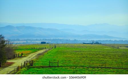 Beautiful Green fields, CA, USA