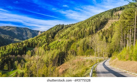 A beautiful green forest scenery with road in Austria countryside and blue sky during sunny day