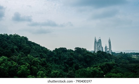 Beautiful green forest with a view of skyscrapers in the distance, view from Henderson Waves Bridge.Singapore cityscape from The Southern Ridges.Giant building behind the forest