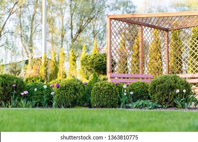 Beautiful green garden with frsesh boxwood bushes, flowers and wood grating summerhouse.Scenic summer gardening background. Landscape design concept