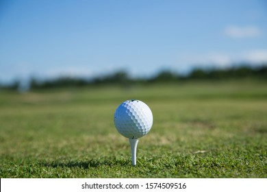 Beautiful green golf course with a golf ball in focus copy space mock up