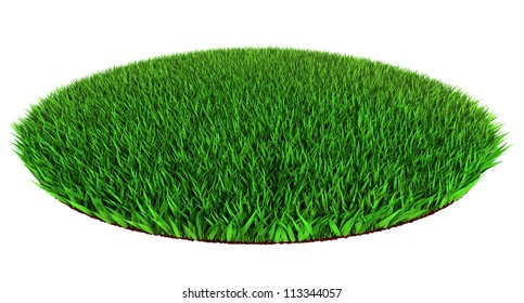 Beautiful green grass disc shape on white backround 3d render.clipping path included