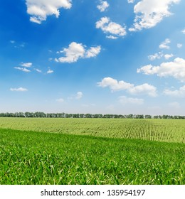 beautiful green landscape and clouds in sky