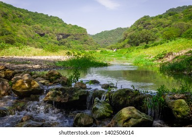 The beautiful green landscape of Salalah area in Oman during Khareef.