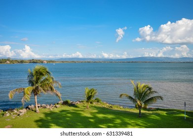 Beautiful green meadow by the shore of the Lake Izabal - the biggest lake in Guatemala. Central America