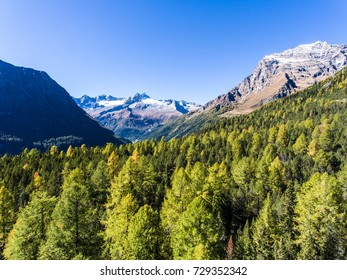 Beautiful green mountain landscape with trees, aerial view over the forest. Italian Alps, Valtellina