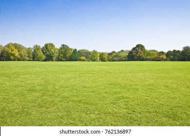 Beautiful green mowed lawn with trees and sky on background - image with copy space