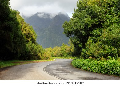 Beautiful green road in the mountains of Madeira towards the UNESCO Laurissilva forest (Laurel forest) on a cloudy summer day