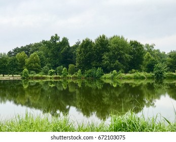 A beautiful green scenery with mirror image.