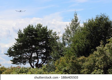 Beautiful green trees on aircraft in blue sky with white clouds background at Sunny summer day, Russian natural landscape view in Moscow Region