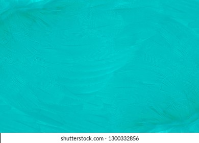 Beautiful green turquoise vintage color trends feather pattern texture background
