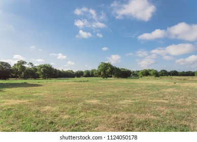 Beautiful green urban park in Irving, Texas, USA. Well-groomed grass lawn, tall trees lush illuminated by sunshine during early spring morning. The United States is an excellent green country ecology