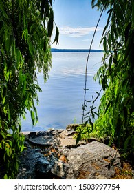 Beautiful green willow tree framing the calm water. Sigtuna, Sweden