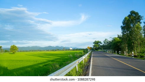 Beautiful green young rice field, local asphalt road, morning golden sun light and wide sky in rainy season.  Natural scene. Farm land scenic North of Thailand. Agriculture land plot for sales.