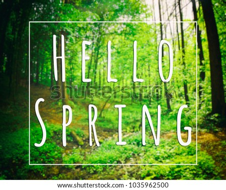 Beautiful Greeting Card Words Hello Spring Stock Photo Edit Now
